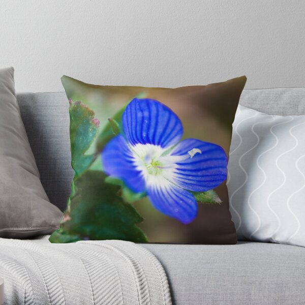 Common Field-speedwell (Veronica persica) Throw Pillow
