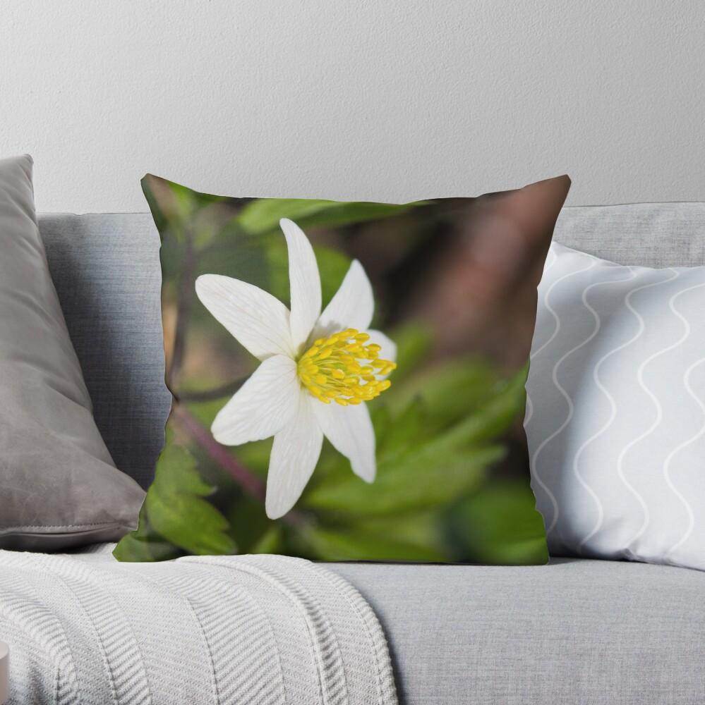 Wood Anemone (Anemone Nemorosa) Throw Pillow