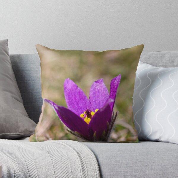 Pasqueflower (Pulsitilla vulgaris) Throw Pillow