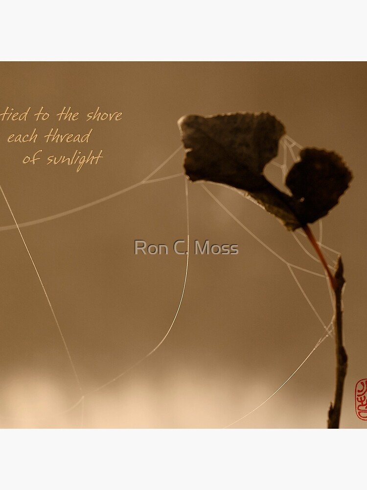 autumn gold by ronmoss