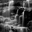 Falls Run BW by LeeAnne Emrick