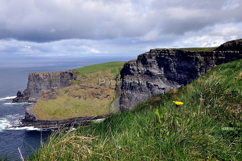 Cliffs of Moher, Co. Clare, Ireland 2 by Pat Herlihy