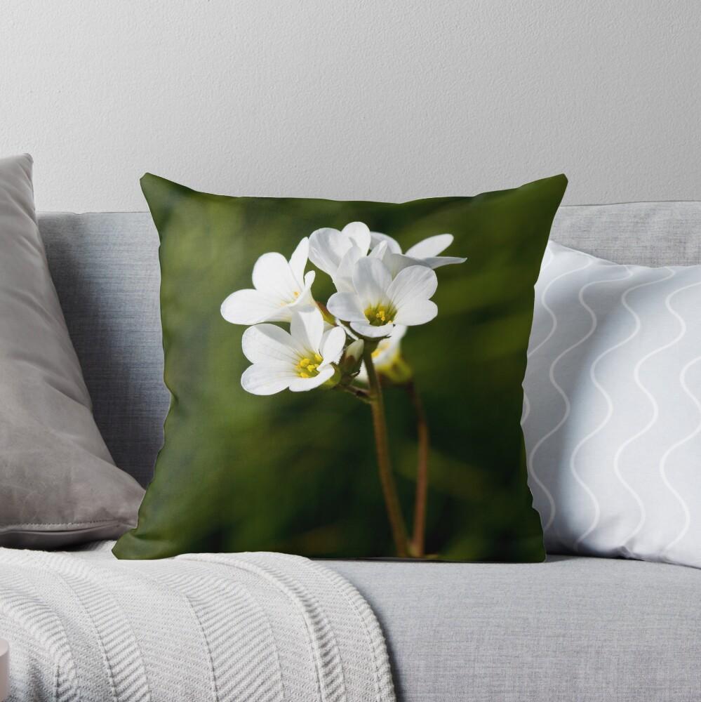 Meadow Saxifrage (Saxifraga granulata) Throw Pillow