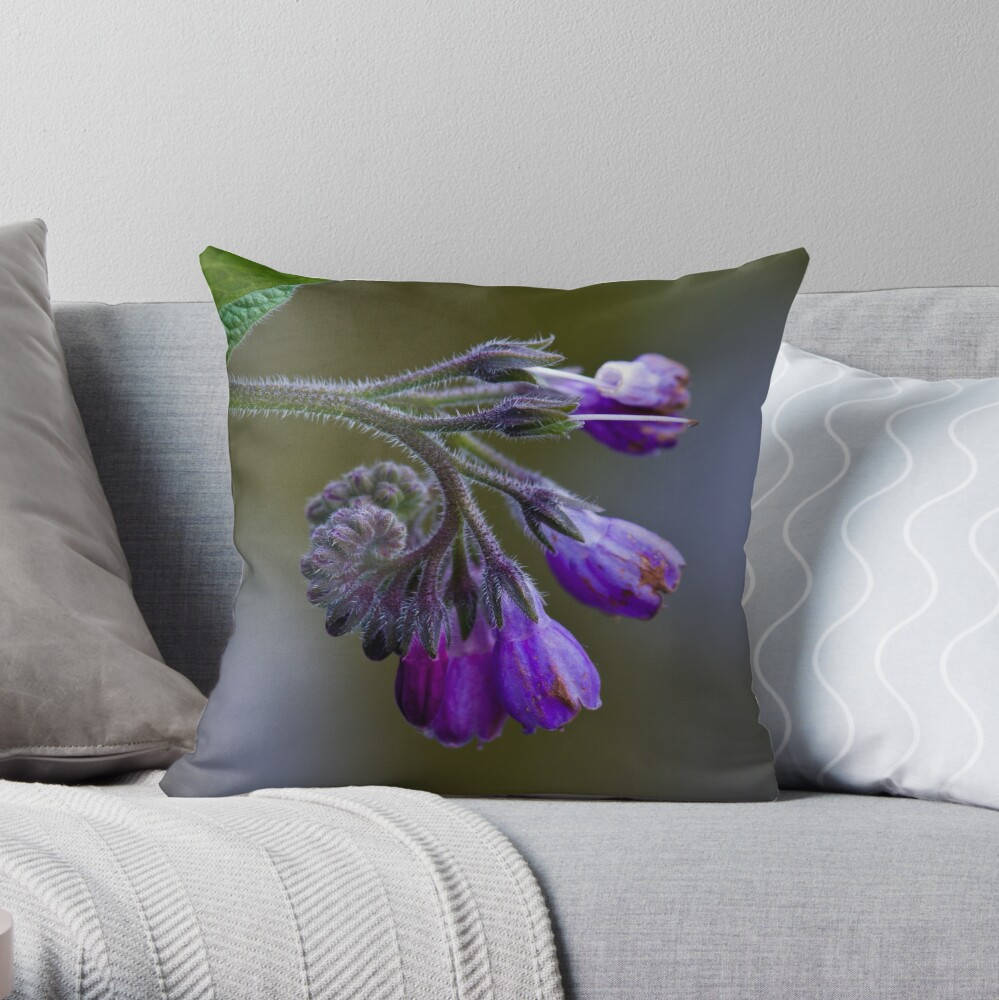 Common Comfrey (Symphytum officinale) Throw Pillow