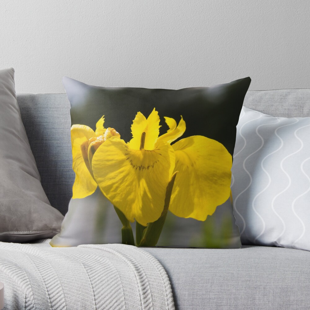 Yellow Iris (Iris pseudacorus) Throw Pillow