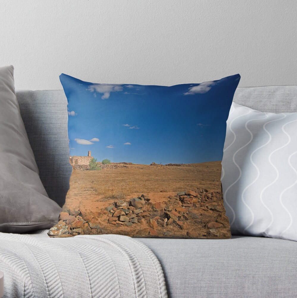 Ruined House Throw Pillow