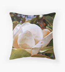 Magnolia Grandiflora in all it's glory Dekokissen