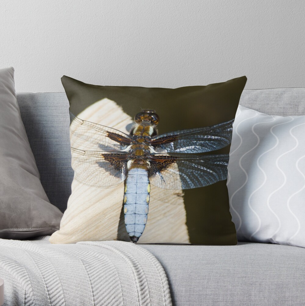 Broad-bodied Chaser (Libellula depressa) Throw Pillow