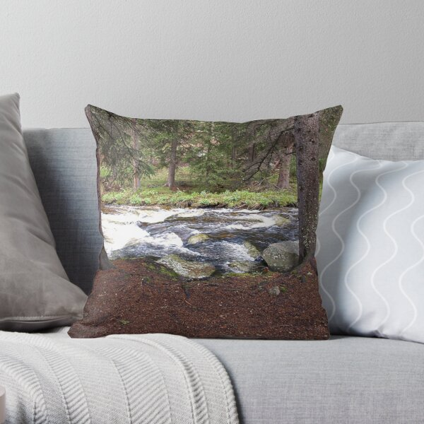 Beside the Clear Creek Throw Pillow
