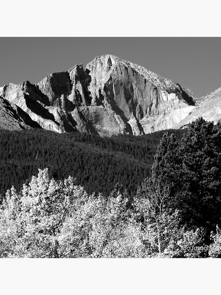 Longs Peak 14,259' by mrbo