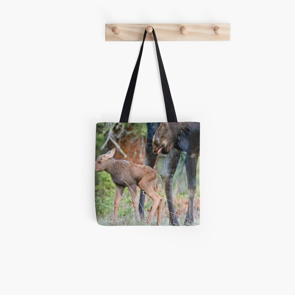 Moose Cow, Days Old Calf, Looking Good Tote Bag
