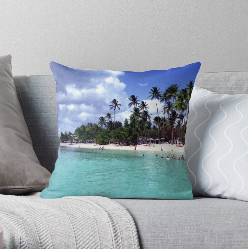 Pigeon Point Throw Pillow