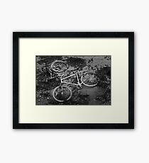 Tricycle? Framed Print