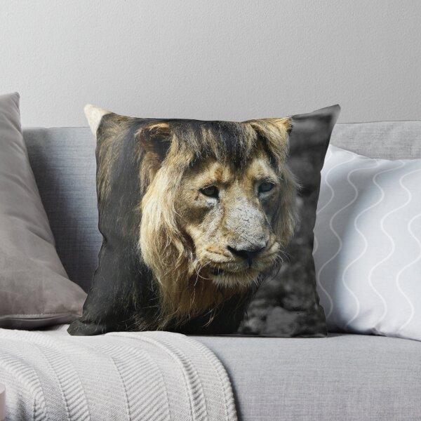 Ashok the Asiatic Lion Throw Pillow