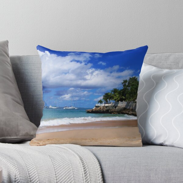 Store Bay Throw Pillow