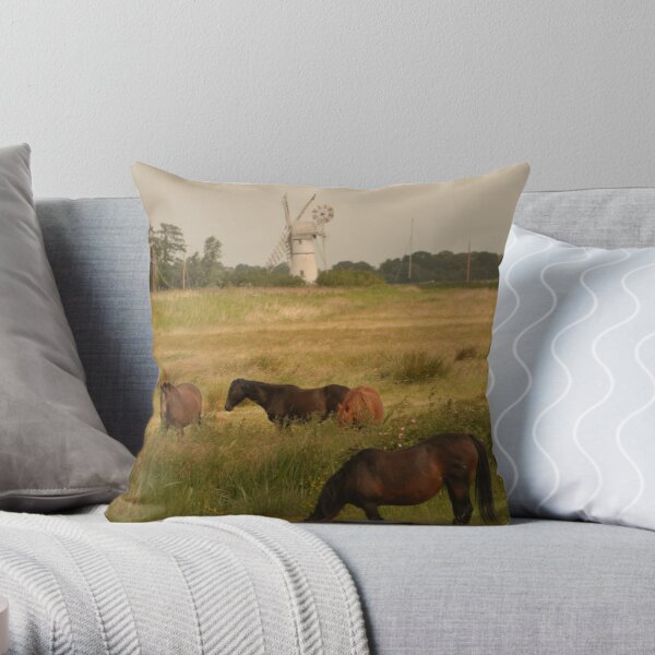 Old Master in Norfolk Throw Pillow