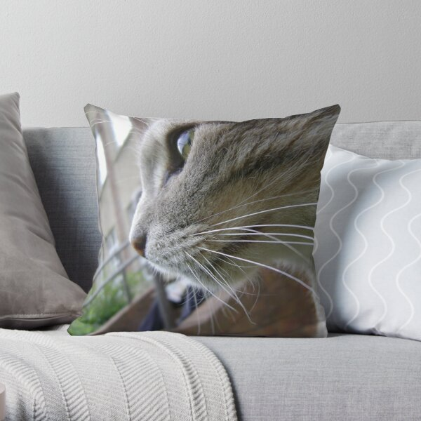 Earl's Patch Throw Pillow