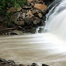 Down Mill Creek by Melody Ricketts