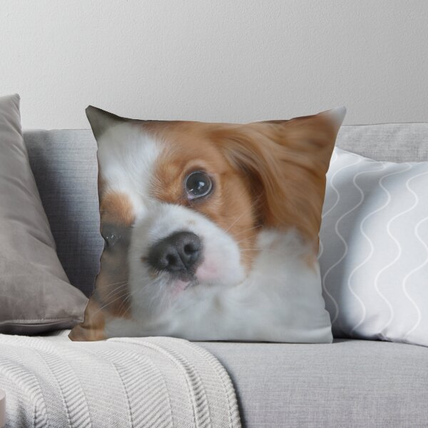 Luciano Throw Pillow