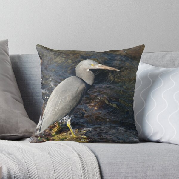 Who Wants To Join Me For Dinner! Throw Pillow
