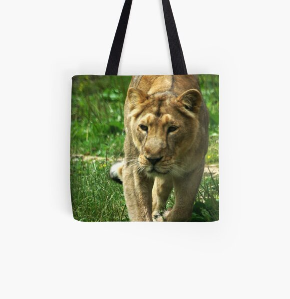 Kalinga the Asiatic Lioness All Over Print Tote Bag