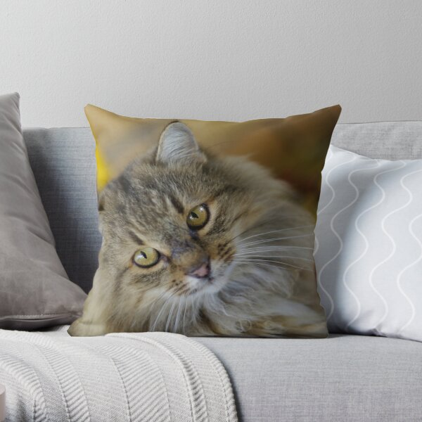 What's fur lunch? Throw Pillow