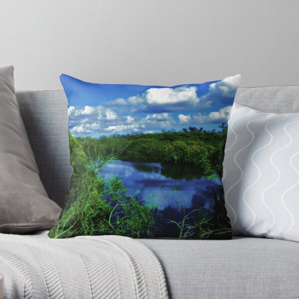 The Spectacles Wetlands Throw Pillow