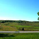 Big Meadows  by Fred Moskey