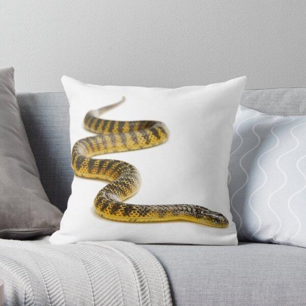 Eastern or Common Tiger Snake (Notechis scutatus scutatus) Throw Pillow