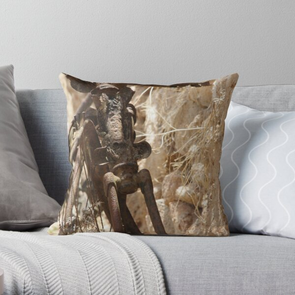 Bicycle Remains Throw Pillow
