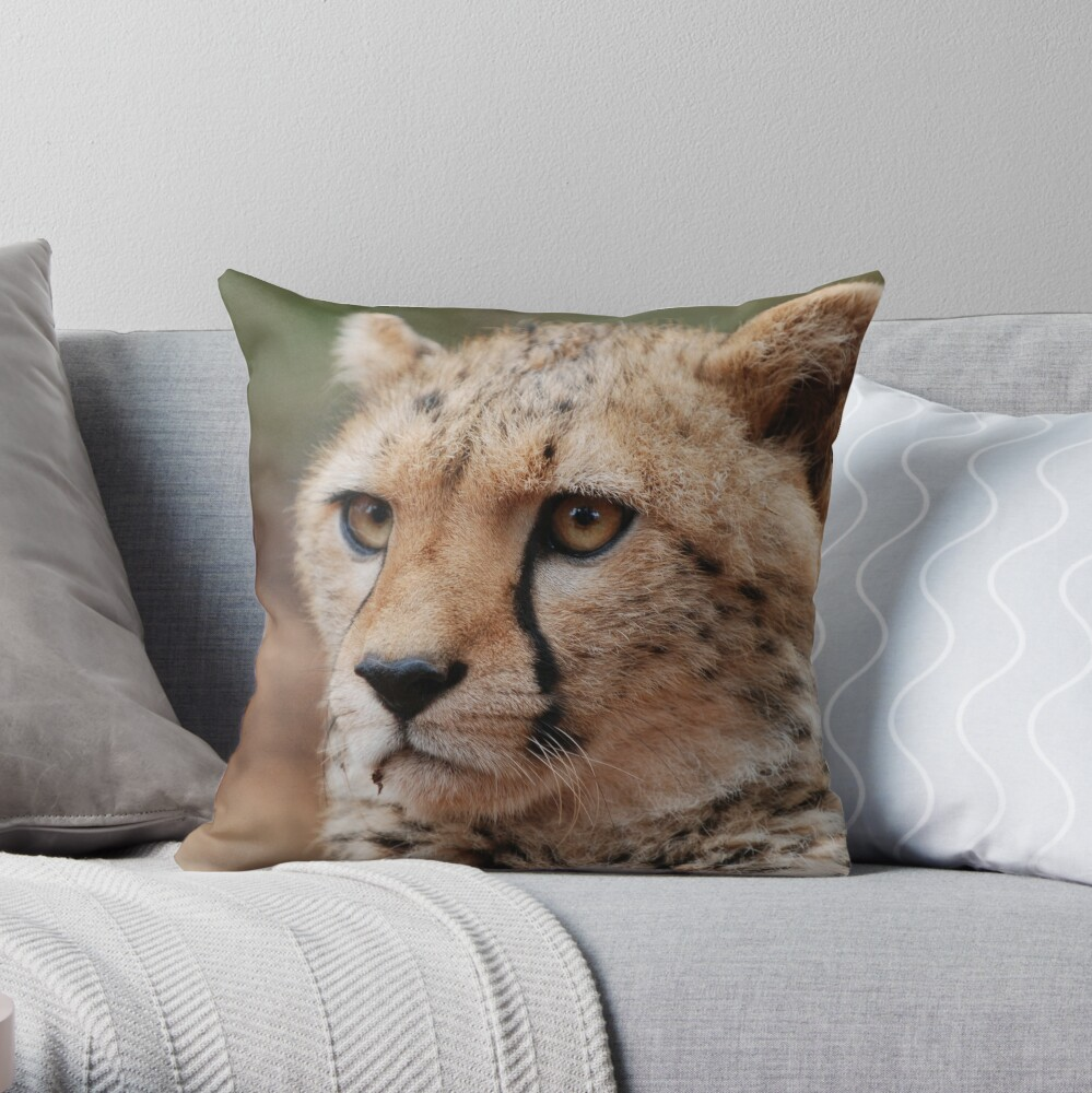 Young male Cheetah - Kenya Throw Pillow
