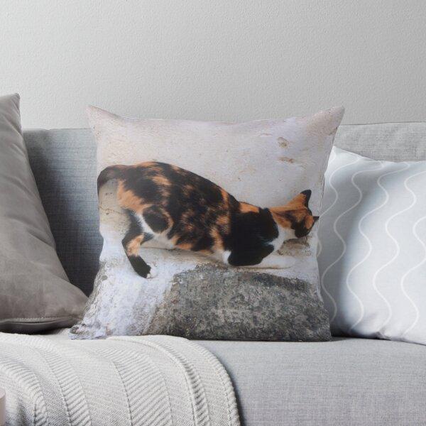 Playful Greek Calico Throw Pillow