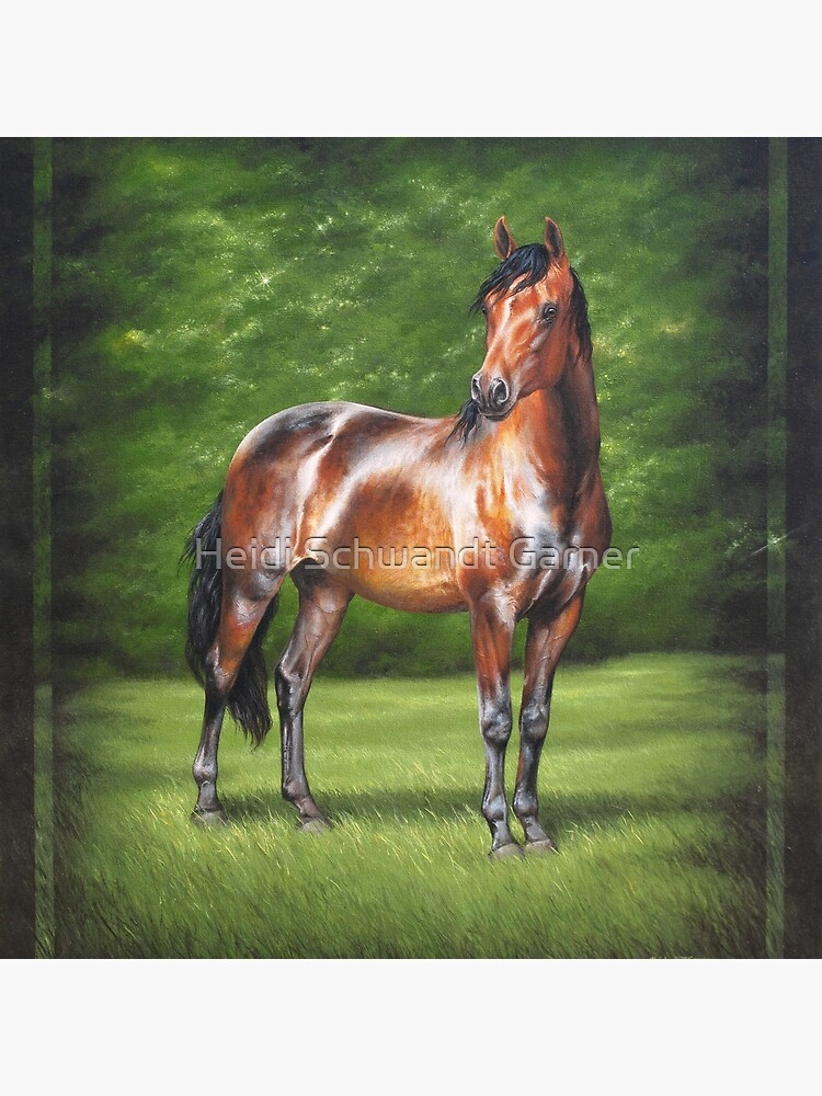 Equus Perfection by heartco