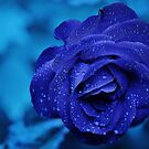 Blue by thed4rkestrose