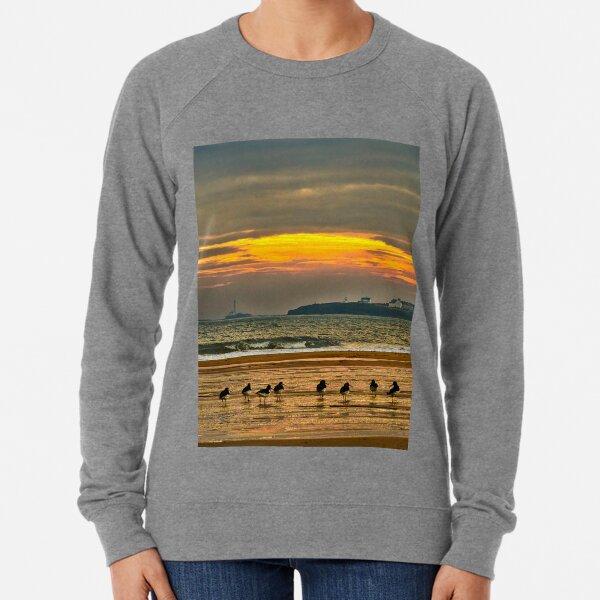 Oystercatchers on the beach Lightweight Sweatshirt