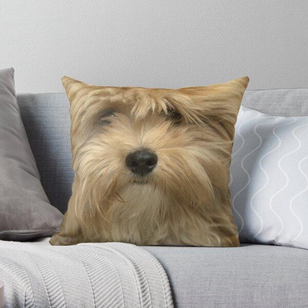 Gizmo Throw Pillow