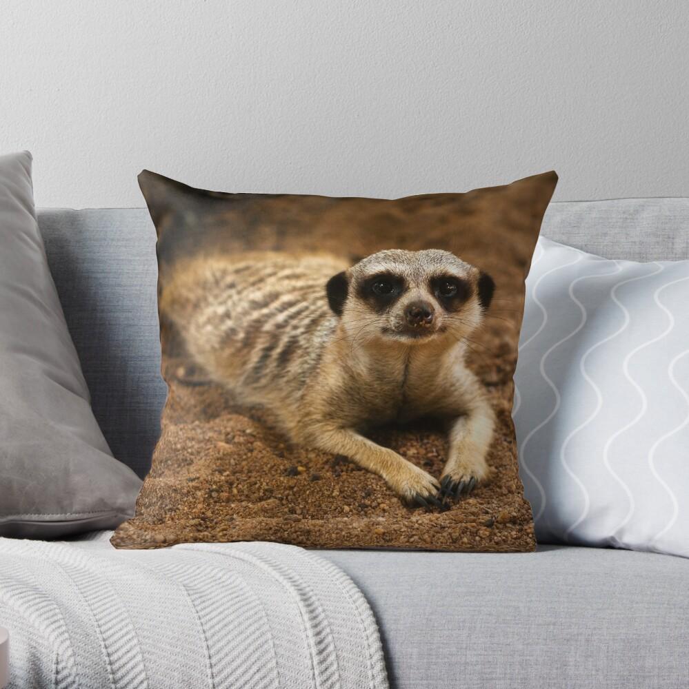 Meerkat Throw Pillow By Bonsta Redbubble