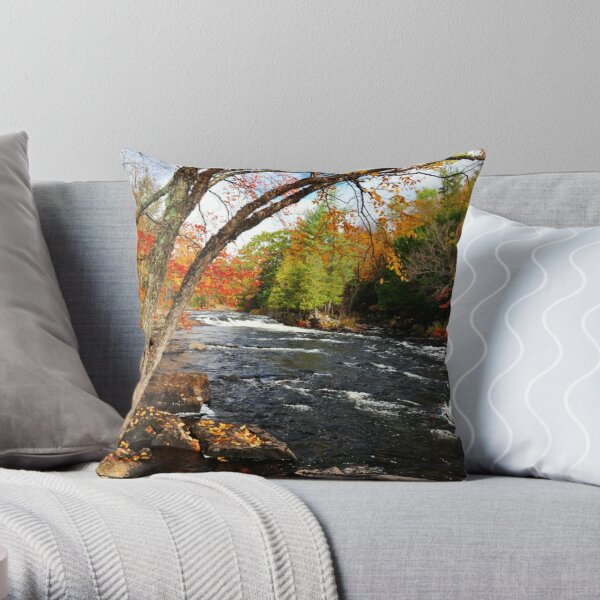 Oxtongue River Rapids Throw Pillow