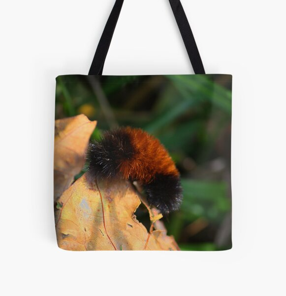 From a Bear to a Tiger! All Over Print Tote Bag