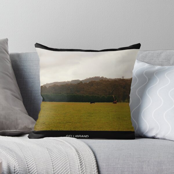 Otways National Park - Gellibrand Throw Pillow