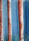Treetrunks / Boomstamme by Elizabeth Kendall