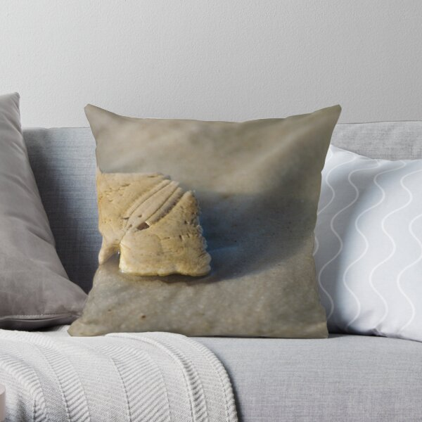 quarter-dollar Throw Pillow