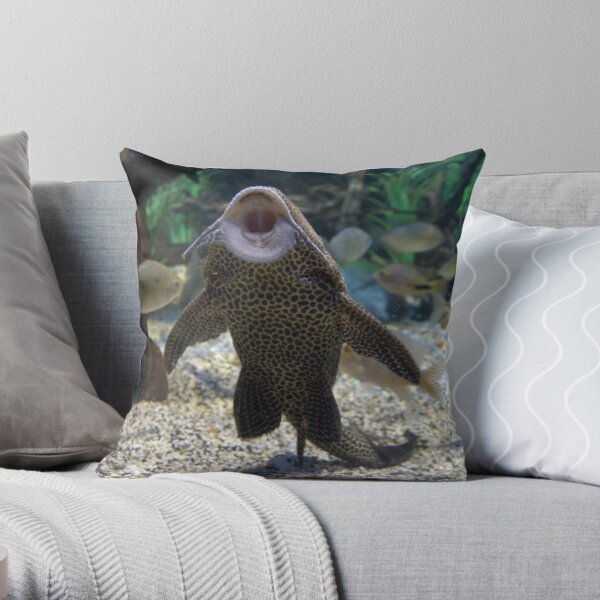 Give Me A Kiss ~ Plecostomus, or Algae eaters Throw Pillow