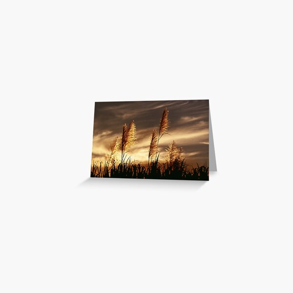 Smoky Sunset Greeting Card