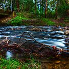 Little River #1 by Jason Green