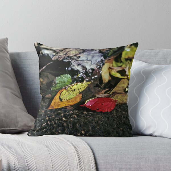 Colorful Leaves in Stream Throw Pillow