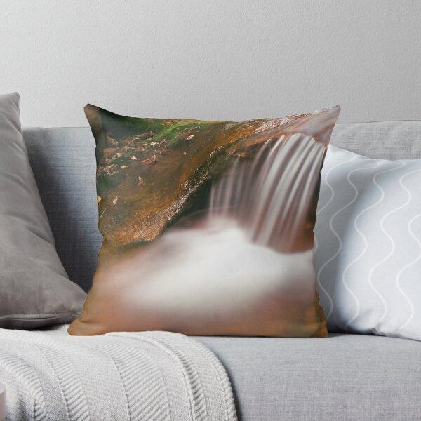 Panchali Kund Stream Throw Pillow