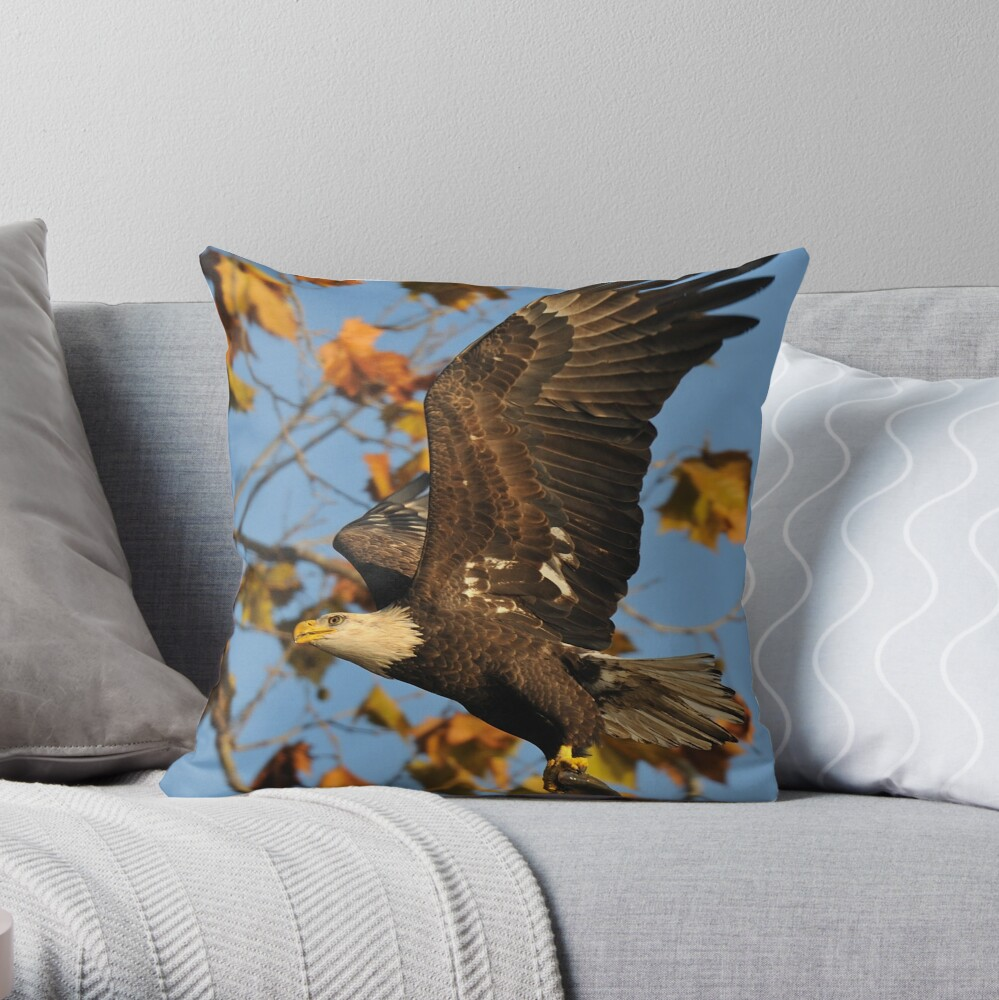 Eagle With Fish, My first Capture Throw Pillow