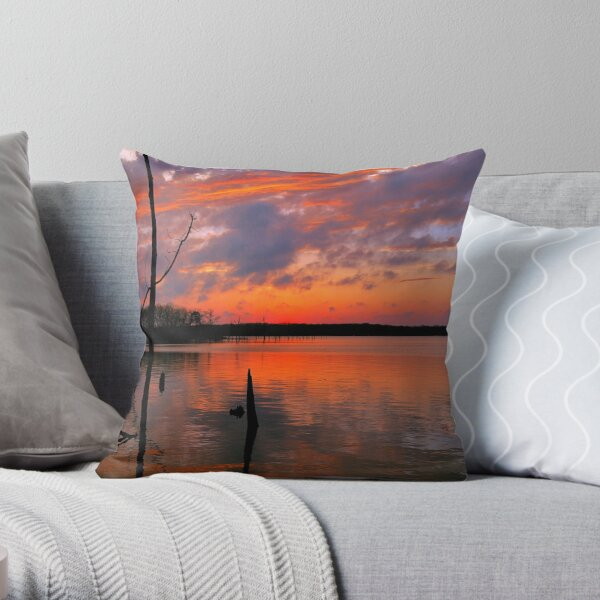 Reflection of  Color Throw Pillow