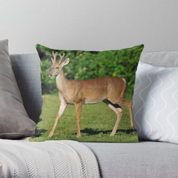 Buck Strolling Around Throw Pillow